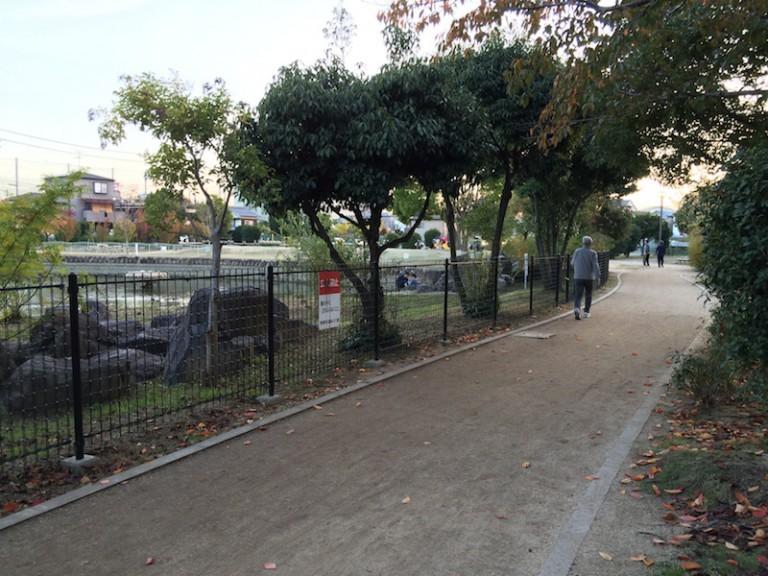 市場池公園 遊歩道