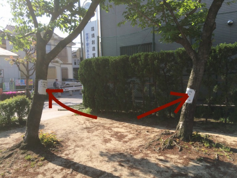 2本の木に貼り紙