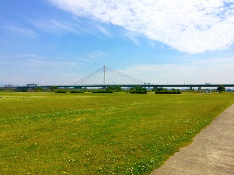 淀川河川公園鳥飼上地区