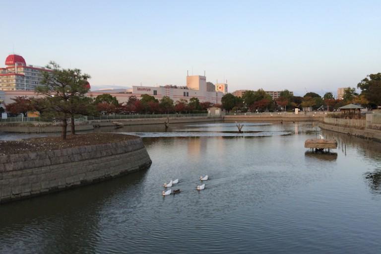 市場池公園