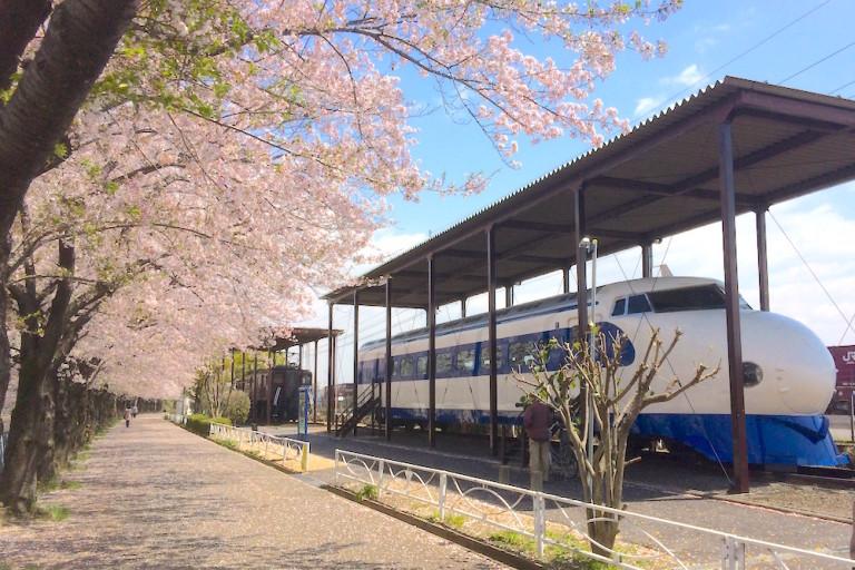 新幹線と電気機関車