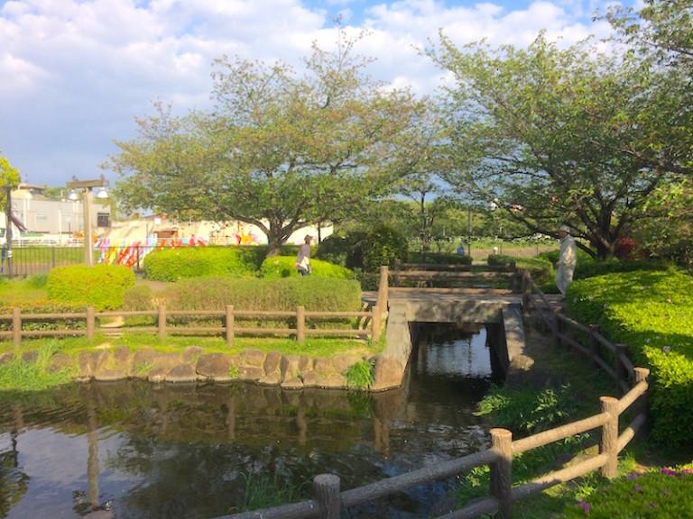 大正川河川敷l公園 池