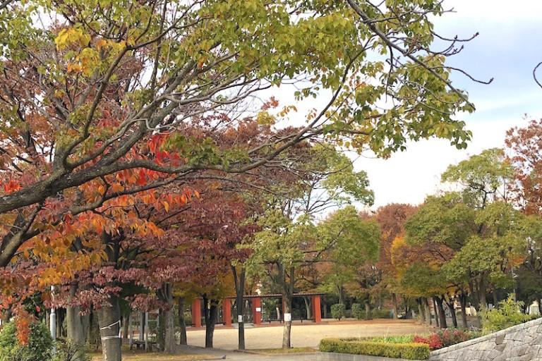 平和公園 紅葉2